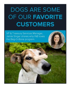 dogs are some of our favorite customers - blog